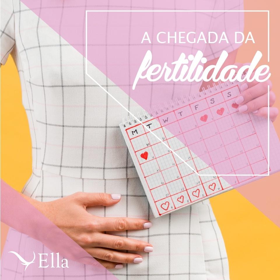Read more about the article A chegada da fertilidade